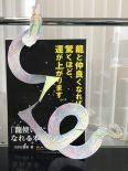 shimizu_160703